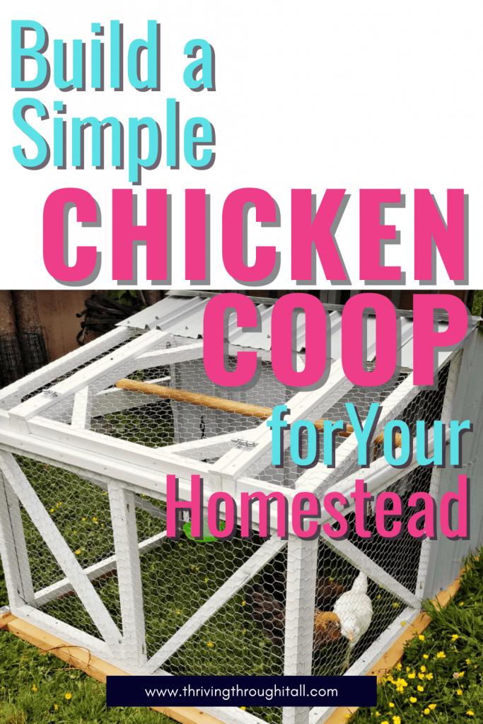 Build a simple chicken coop